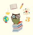Owls school vector
