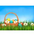 Easter background easter eggs and flower with vector