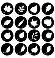 Set of round nature icons vector