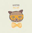 Kittycat8 vector