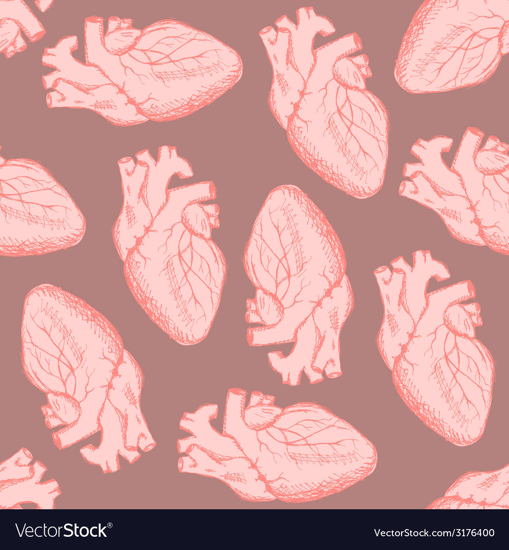 Sketch human heart in vintage style vector | Price: 1 Credit (USD $1)