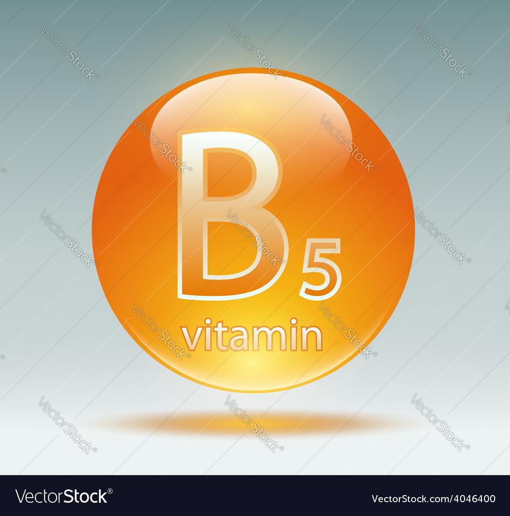 Vitamin b5 vector | Price: 1 Credit (USD $1)