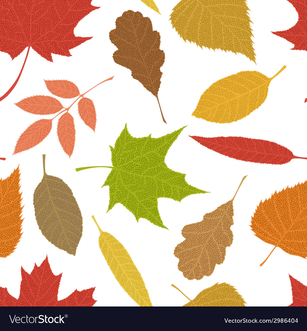 Seamless autumn pattern vector | Price: 1 Credit (USD $1)