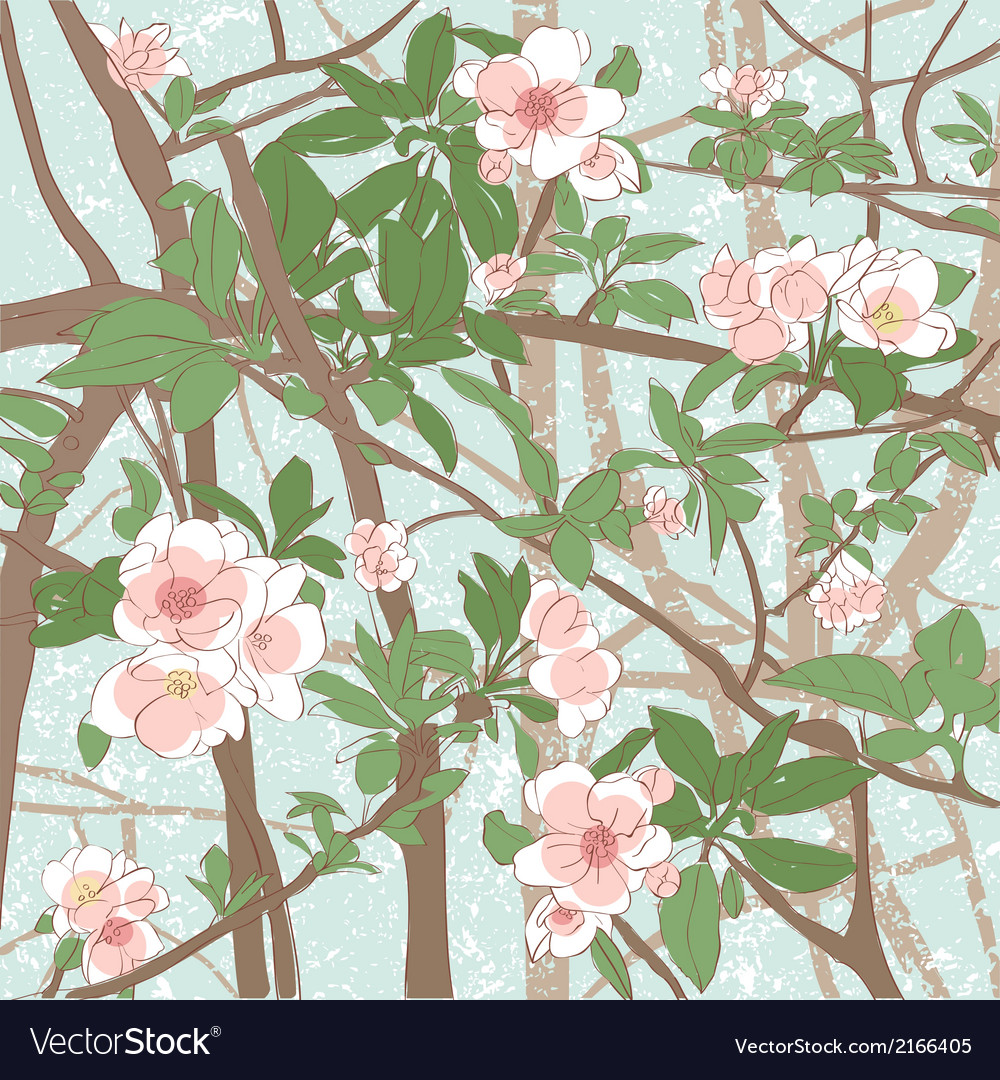 Apple flowers background vector   Price: 1 Credit (USD $1)