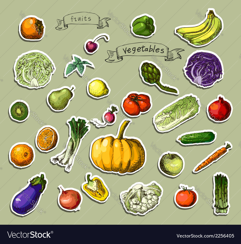 Hand-painted vegetables fruits vector | Price: 1 Credit (USD $1)