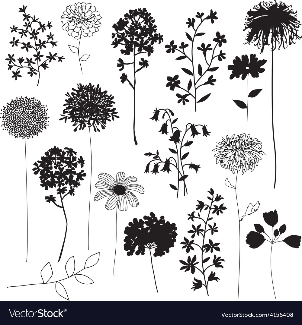 Botanical silhouettes vector | Price: 1 Credit (USD $1)