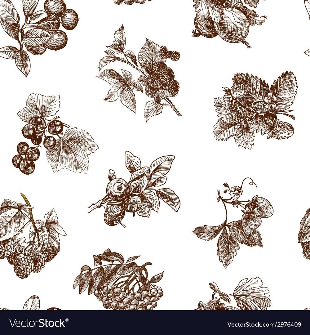 Sketch berries seamless pattern vector   Price: 1 Credit (USD $1)