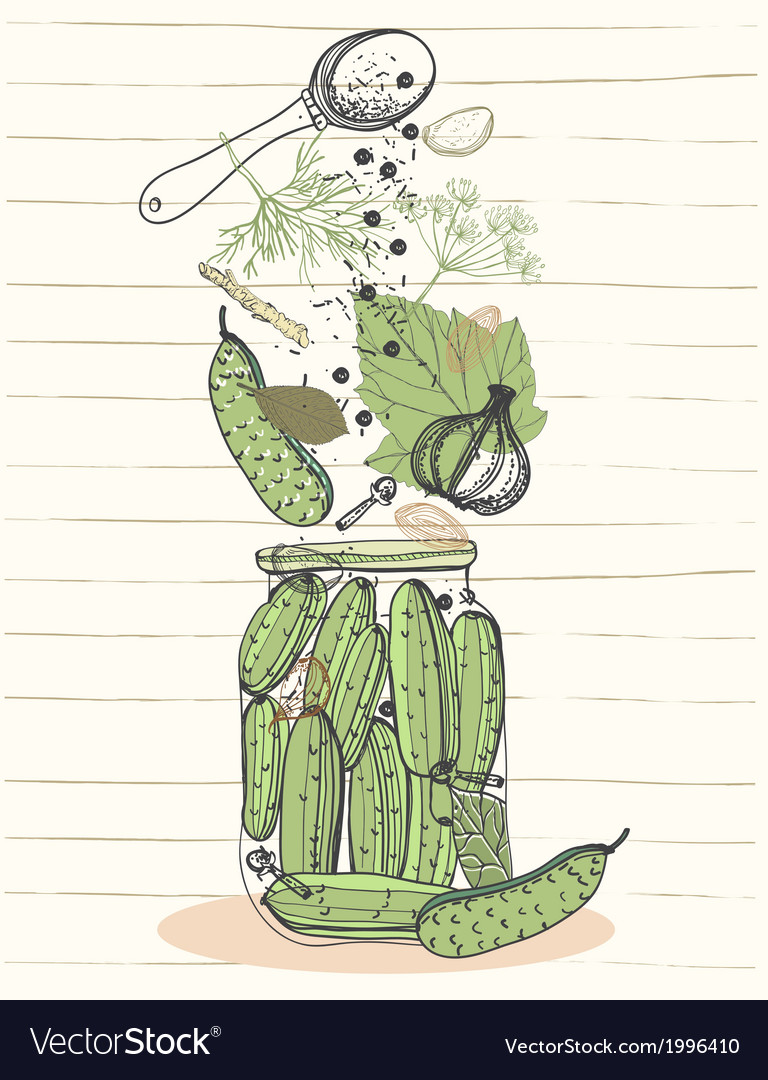 Pickled cucumbers vector | Price: 1 Credit (USD $1)