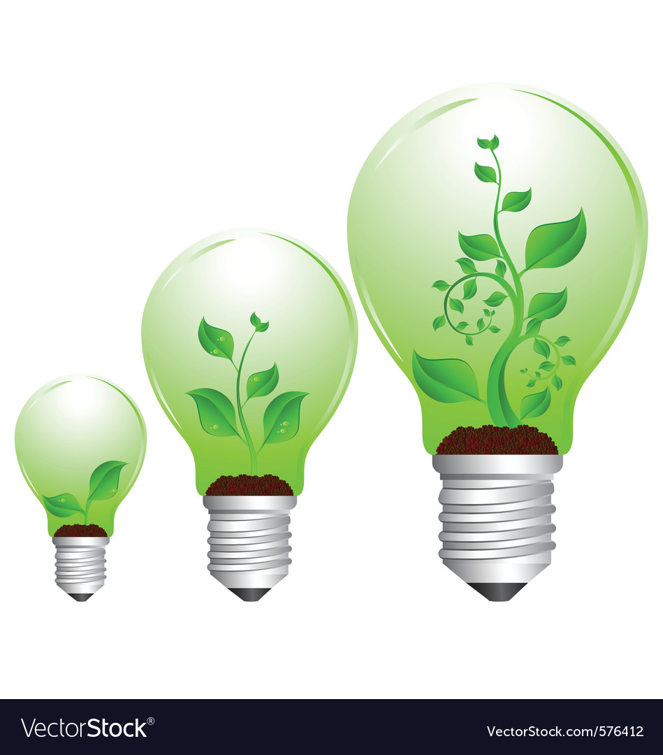 Bulb and plant growth vector | Price: 1 Credit (USD $1)