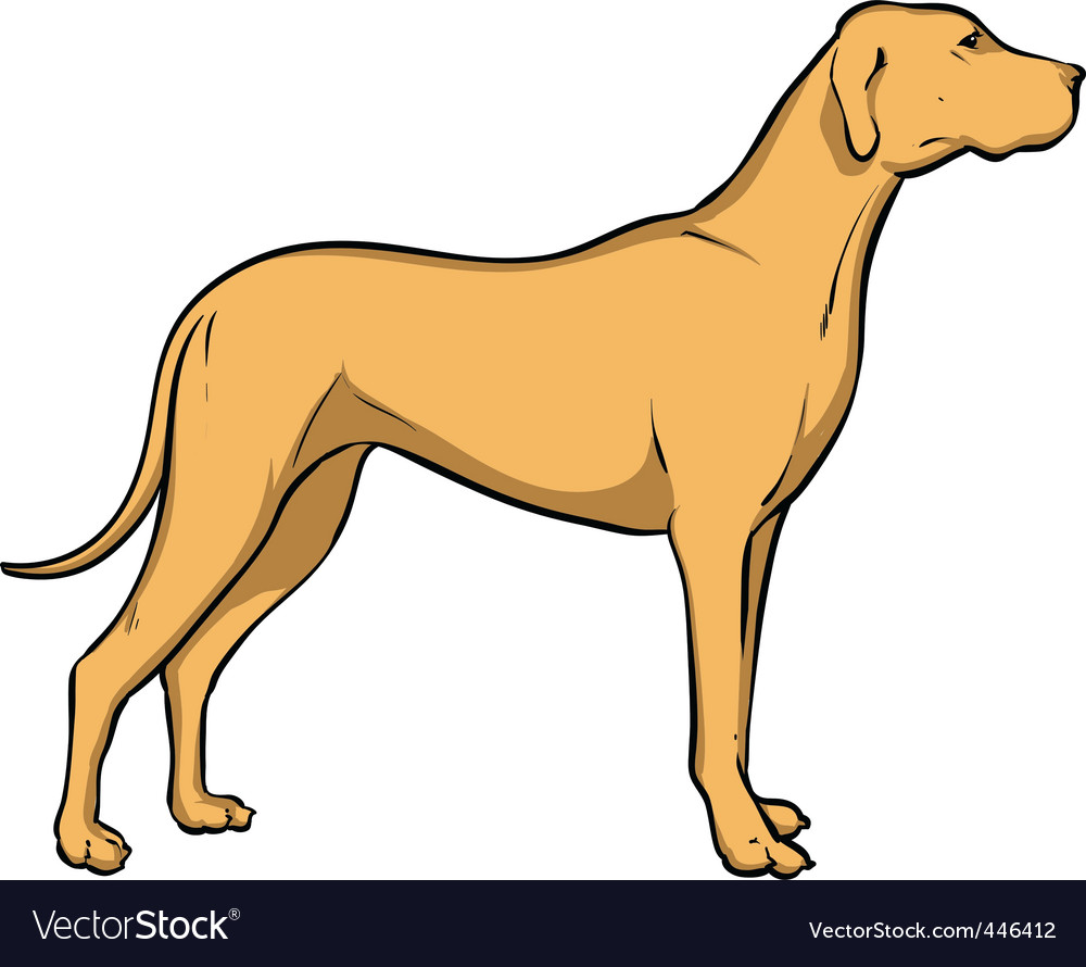 Hunting dog vector | Price: 1 Credit (USD $1)