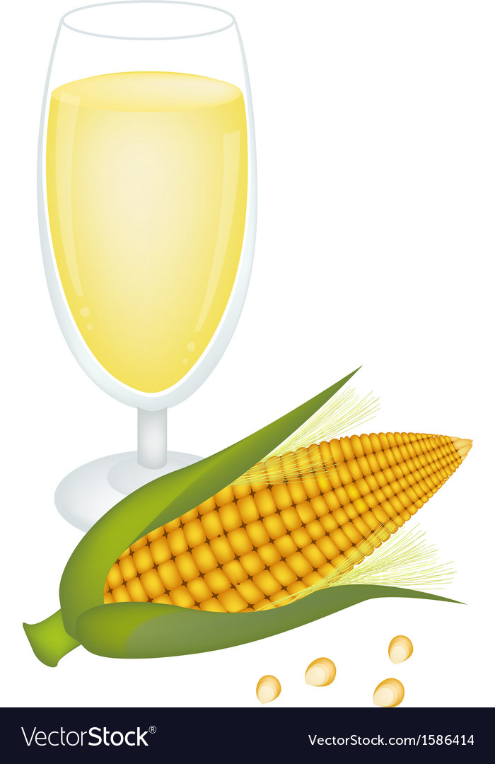 Glass of corn juice and fresh sweet corn vector | Price: 1 Credit (USD $1)