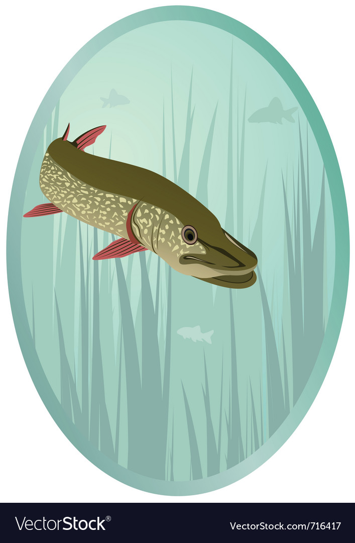 River predator vector | Price: 1 Credit (USD $1)