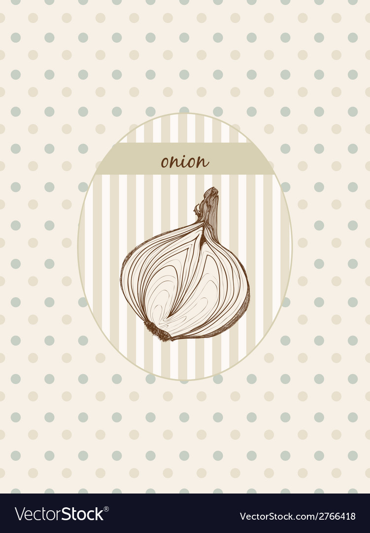 Onion hand drawn graphic vector | Price: 1 Credit (USD $1)