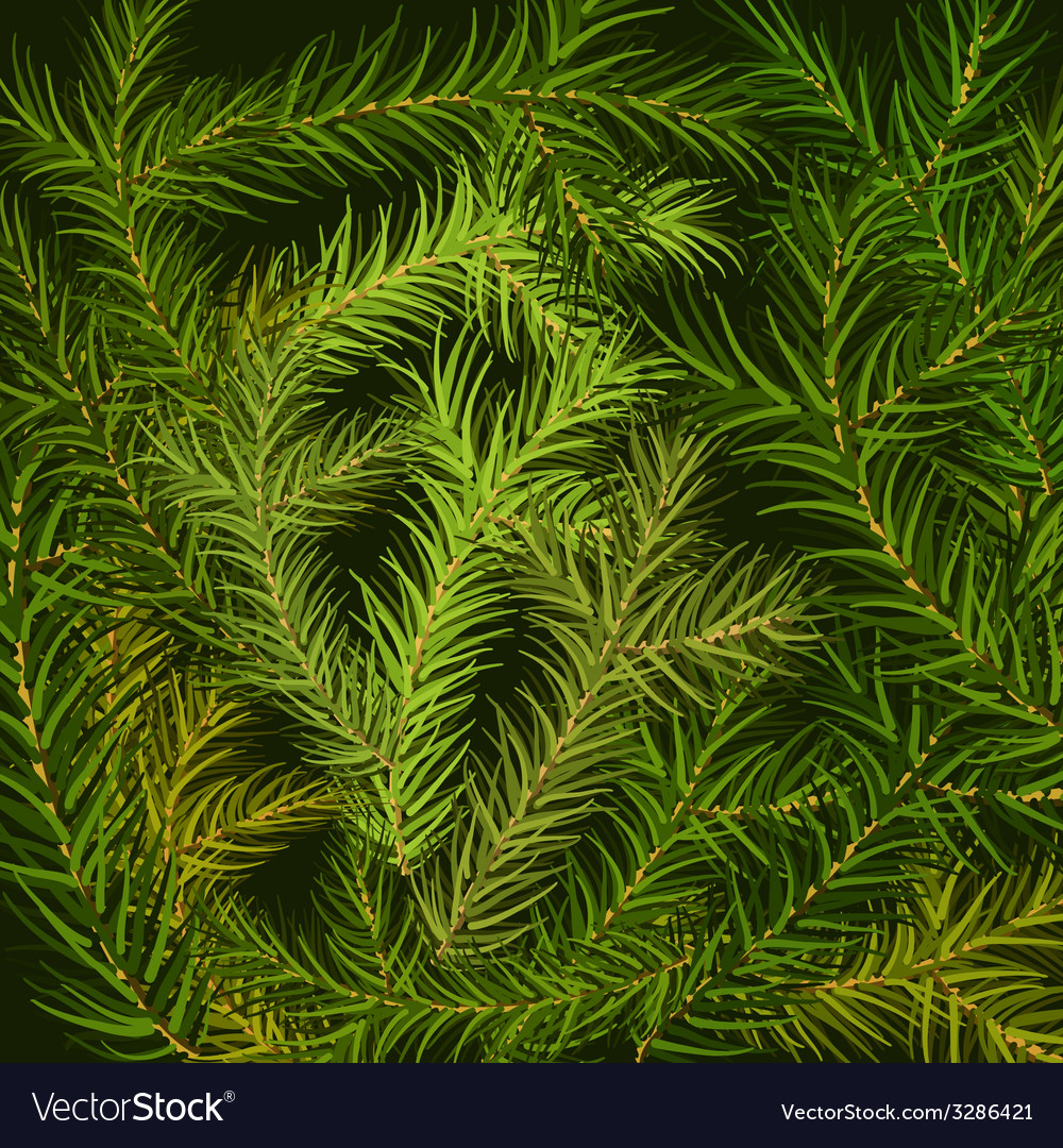 Fir branch background vector | Price: 1 Credit (USD $1)