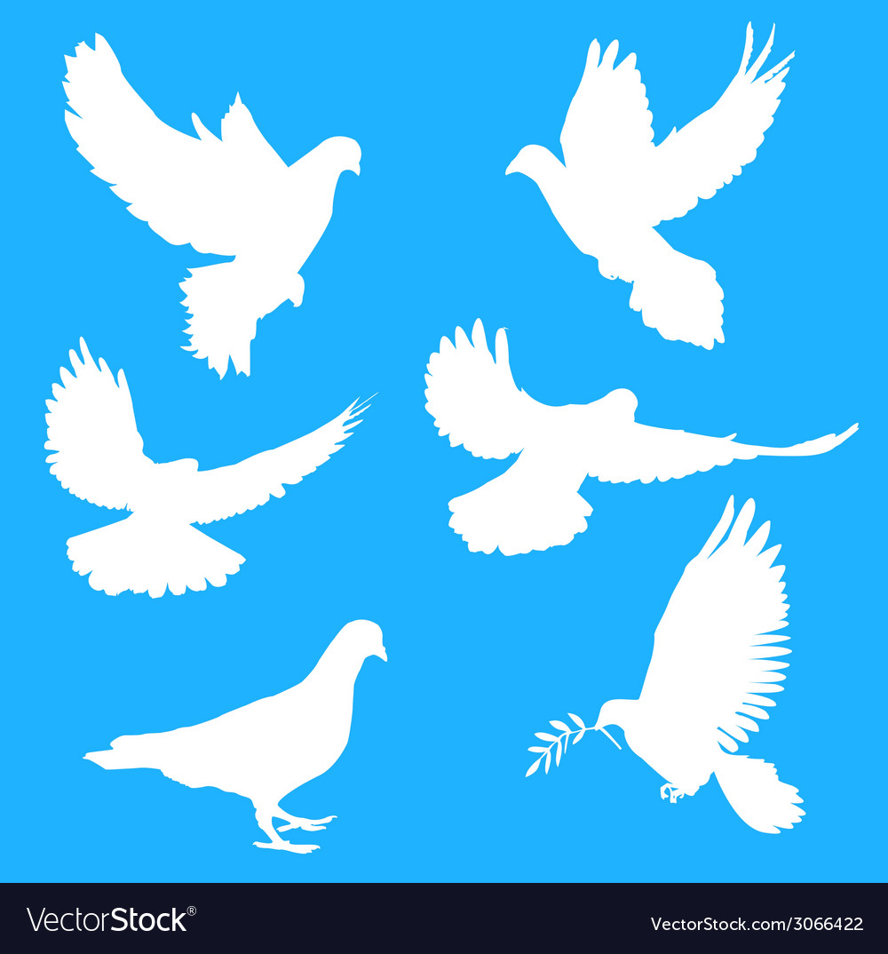 White silhouettes of doves vector | Price: 1 Credit (USD $1)
