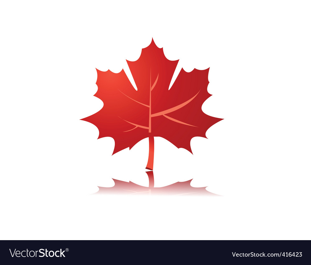 Maple leaf vector | Price: 1 Credit (USD $1)