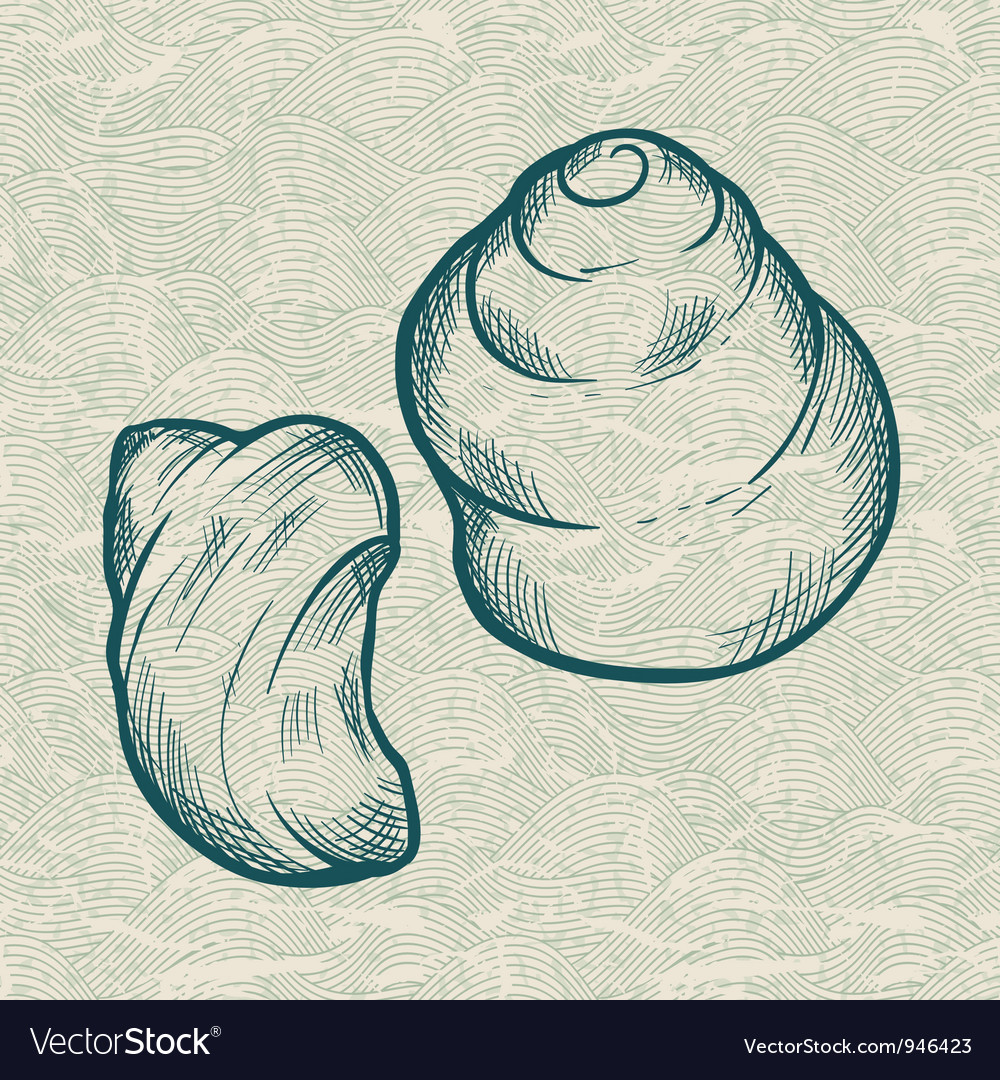 Sea shells background vector | Price: 1 Credit (USD $1)
