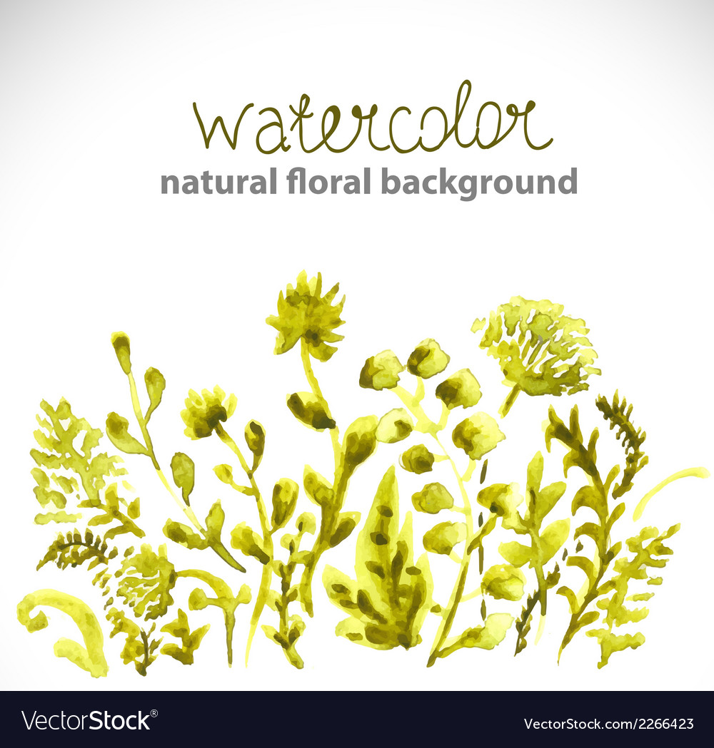 Watercolor beautiful green background vector | Price: 1 Credit (USD $1)