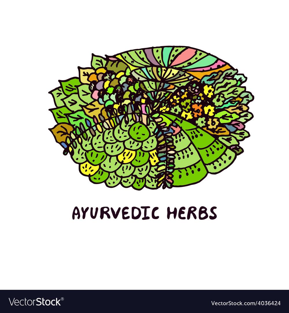 Zentangle element ayurvedic herbs vector | Price: 1 Credit (USD $1)