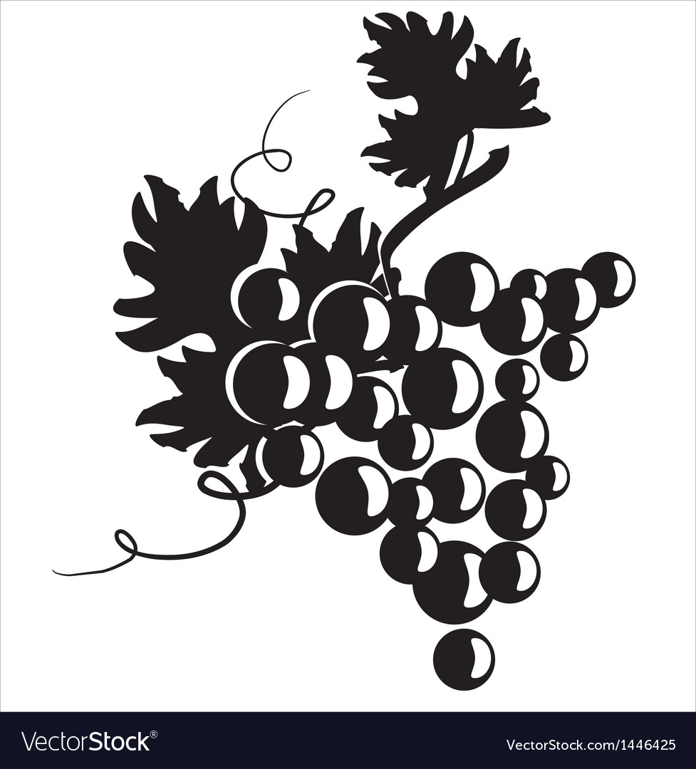 Black silhouette of grapes vector | Price: 1 Credit (USD $1)