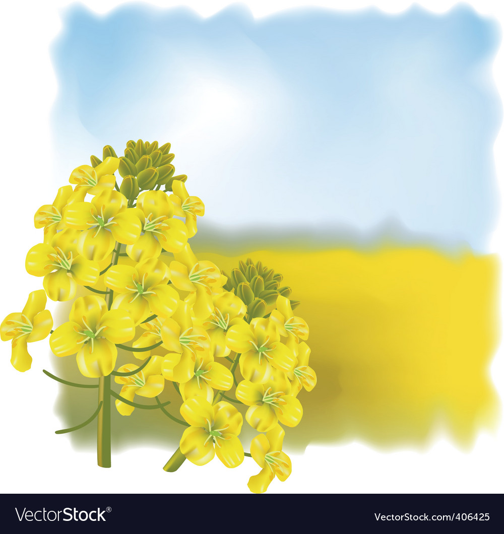 Floral landscape vector | Price: 3 Credit (USD $3)