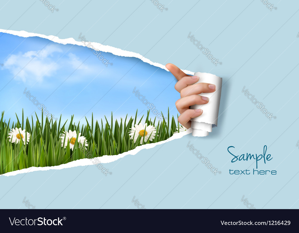 Nature background with green grass and sky and vector