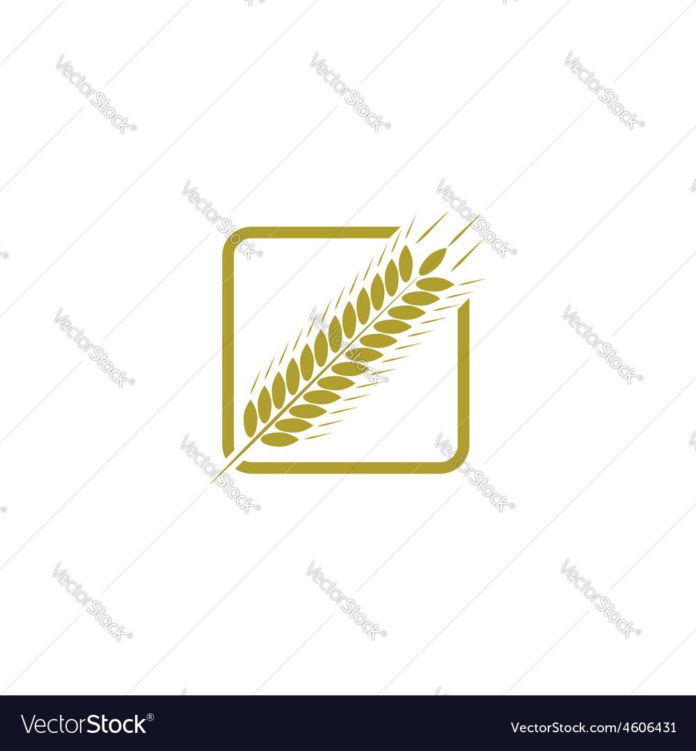 Ear of wheat farm logo bread concept sign vector   Price: 1 Credit (USD $1)