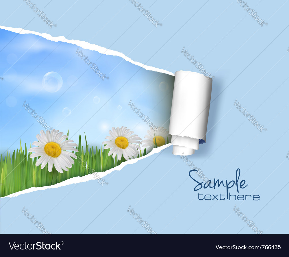 Nature background with ripped paper vector | Price: 3 Credit (USD $3)
