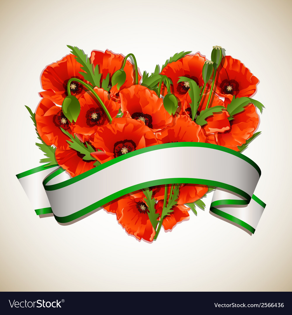 Flower heart of red poppies with ribbon vector | Price: 1 Credit (USD $1)