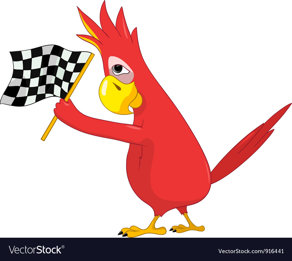 Funny parrot racing vector   Price: 1 Credit (USD $1)