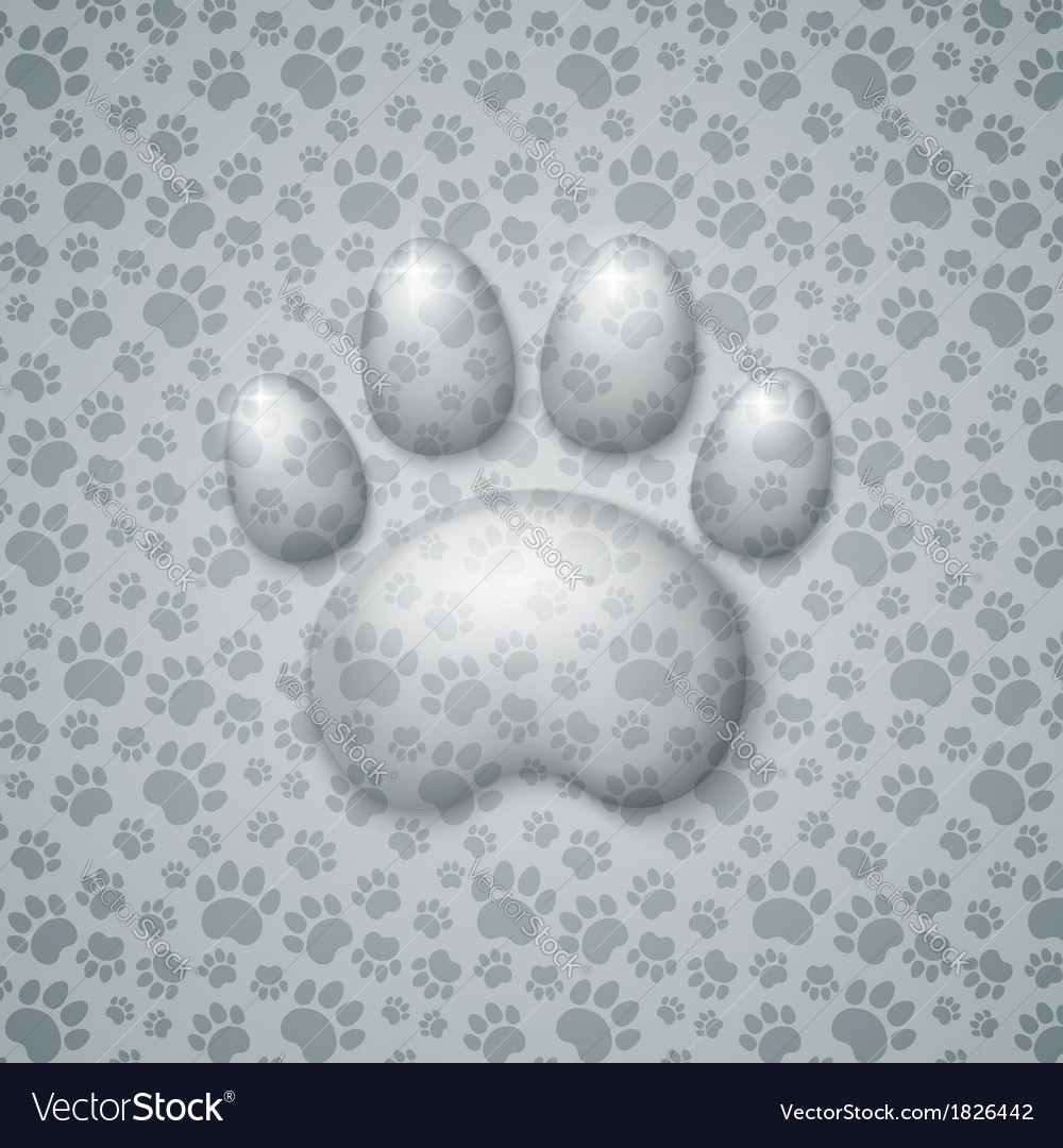 Trace cat in the form of droplets water vector | Price: 1 Credit (USD $1)