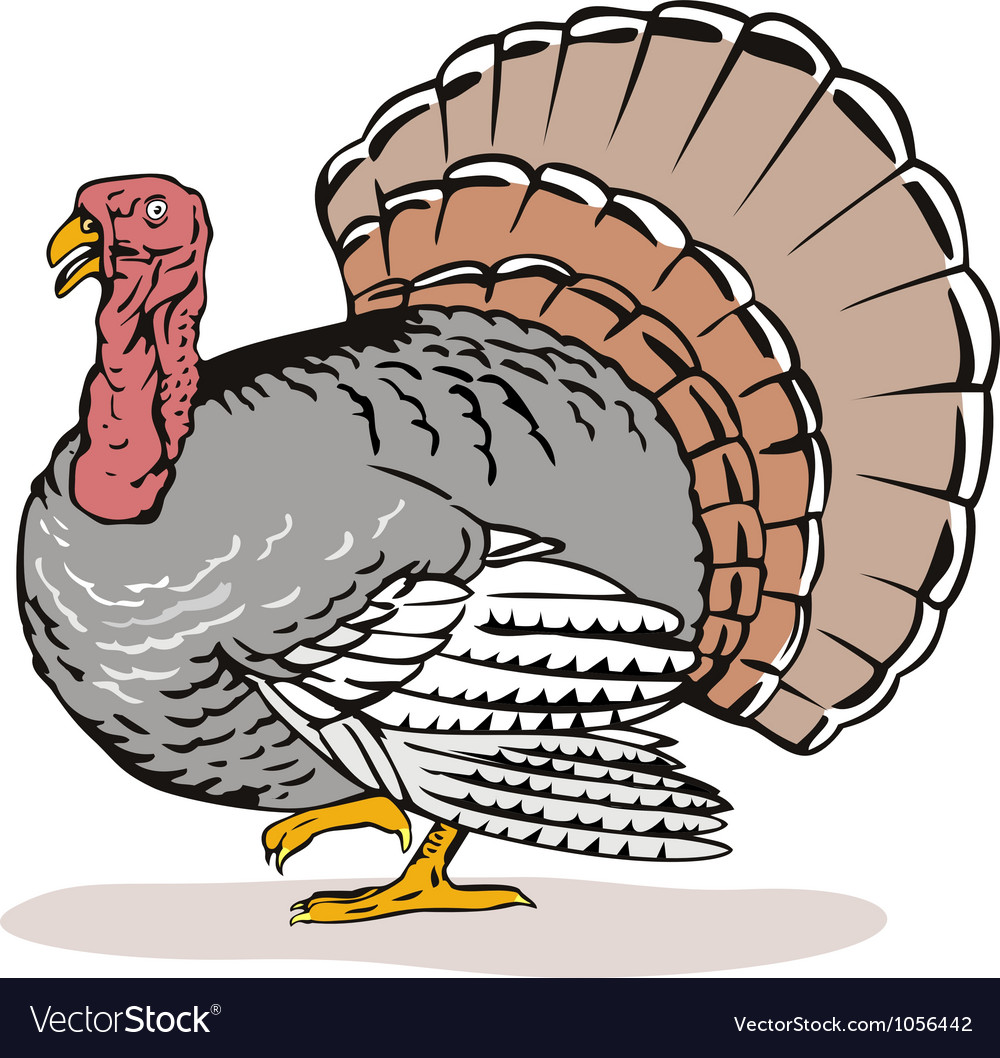 Wild turkey retro vector | Price: 1 Credit (USD $1)
