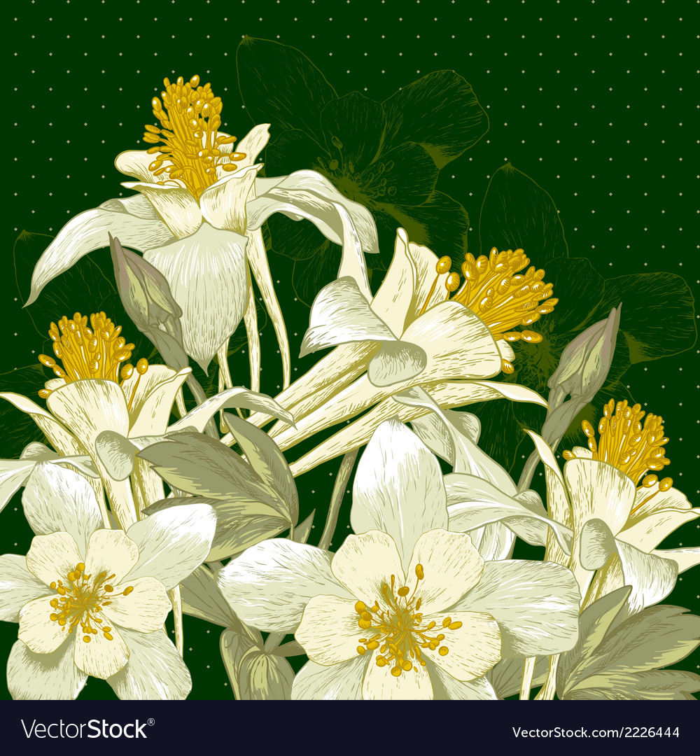 Beautiful background with white blooming flowers vector | Price: 1 Credit (USD $1)