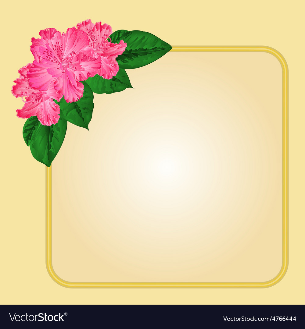 Golden frame with rhododendron greeting card vector | Price: 1 Credit (USD $1)