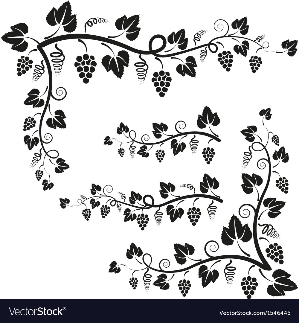 Corners vine vector | Price: 1 Credit (USD $1)