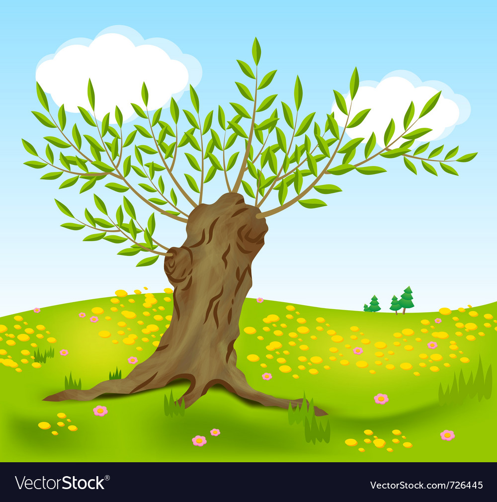 Old willow vector | Price: 1 Credit (USD $1)