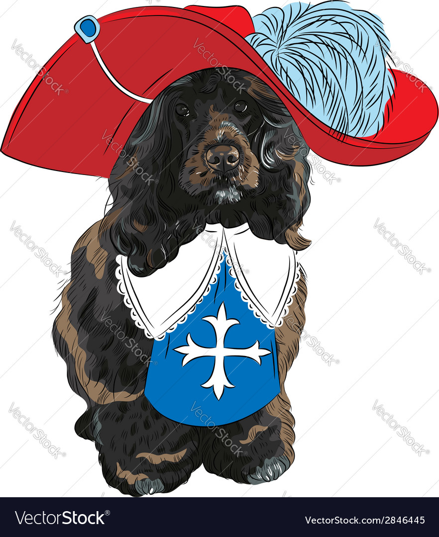 Portuguese water dog musketeer vector | Price: 1 Credit (USD $1)