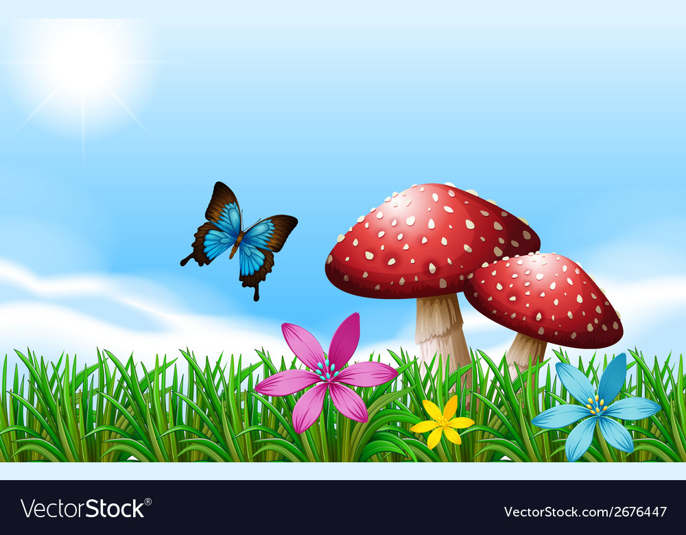 A butterfly near the red mushrooms vector   Price: 1 Credit (USD $1)