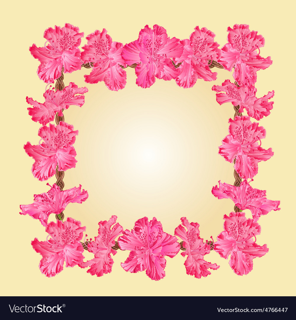 Frame with rhododendron greeting card vector | Price: 1 Credit (USD $1)
