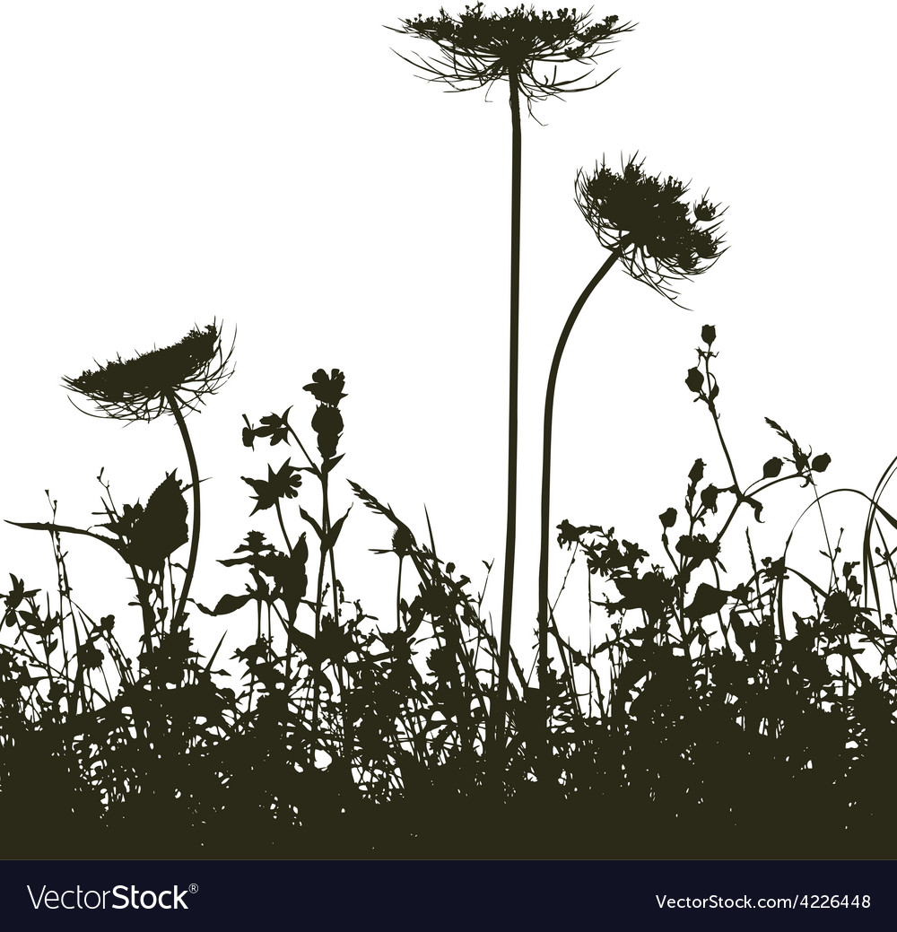 Meadow weeds silhouettes plants vector | Price: 1 Credit (USD $1)