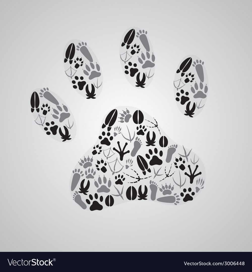 Various animal footprints eps10 vector | Price: 1 Credit (USD $1)