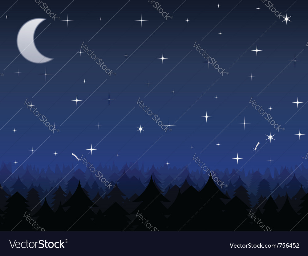 Night vector | Price: 1 Credit (USD $1)
