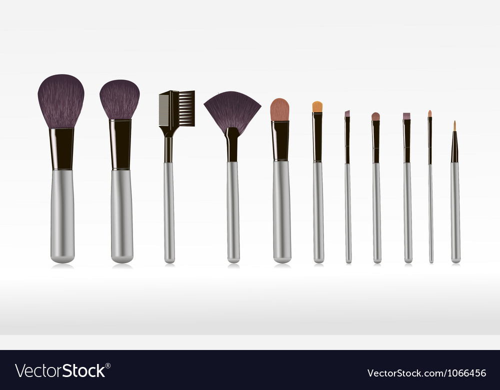 Makeup brushes vector | Price: 1 Credit (USD $1)