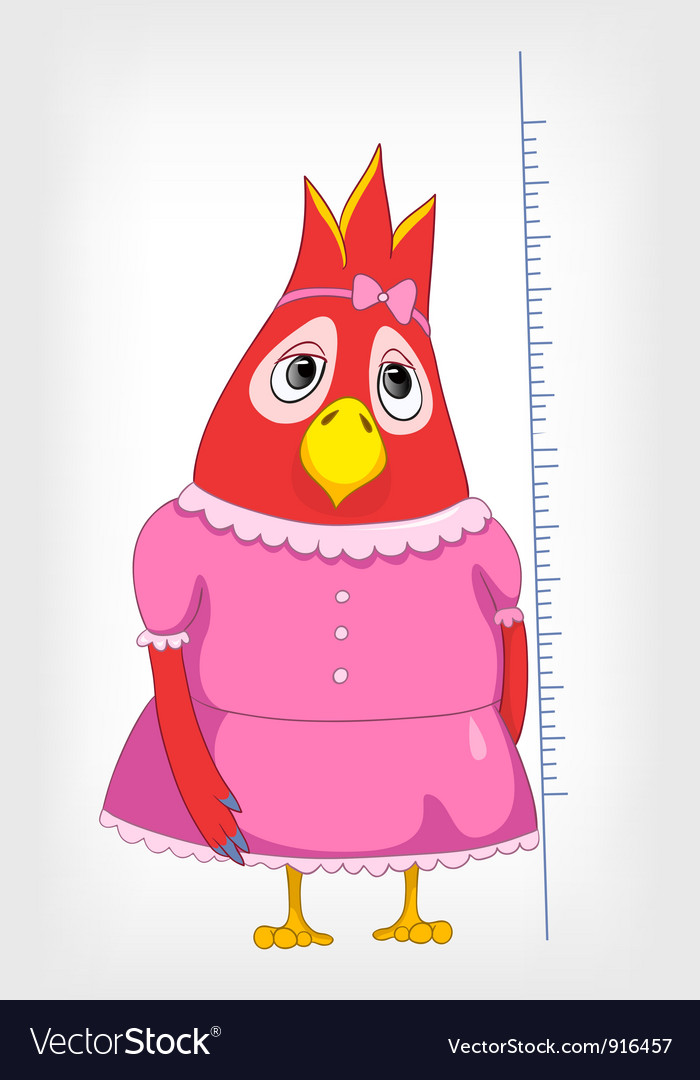 Baby parrot vector | Price: 1 Credit (USD $1)