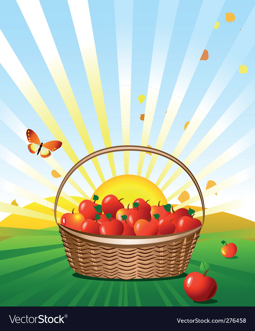 Apple basket vector | Price: 3 Credit (USD $3)