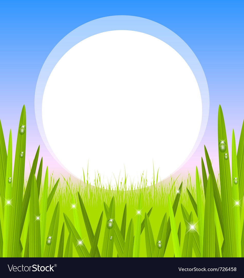 Morning grass with copy space vector | Price: 1 Credit (USD $1)