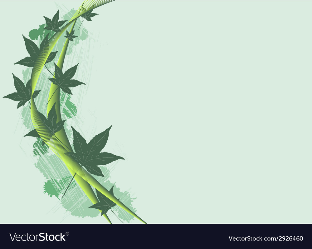 Background with leafs vector