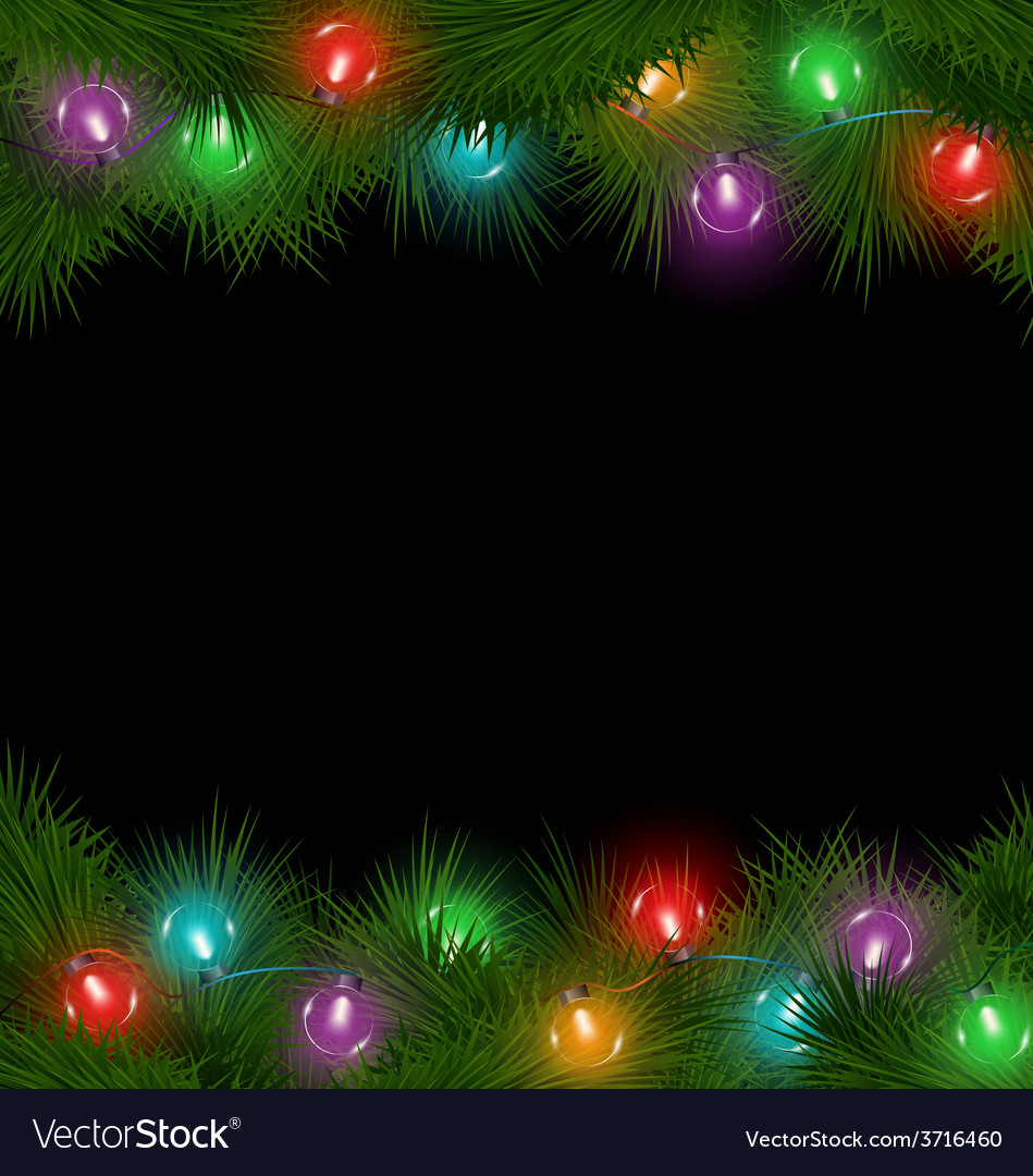 Multicolored christmas lights on pine branches vector | Price: 1 Credit (USD $1)