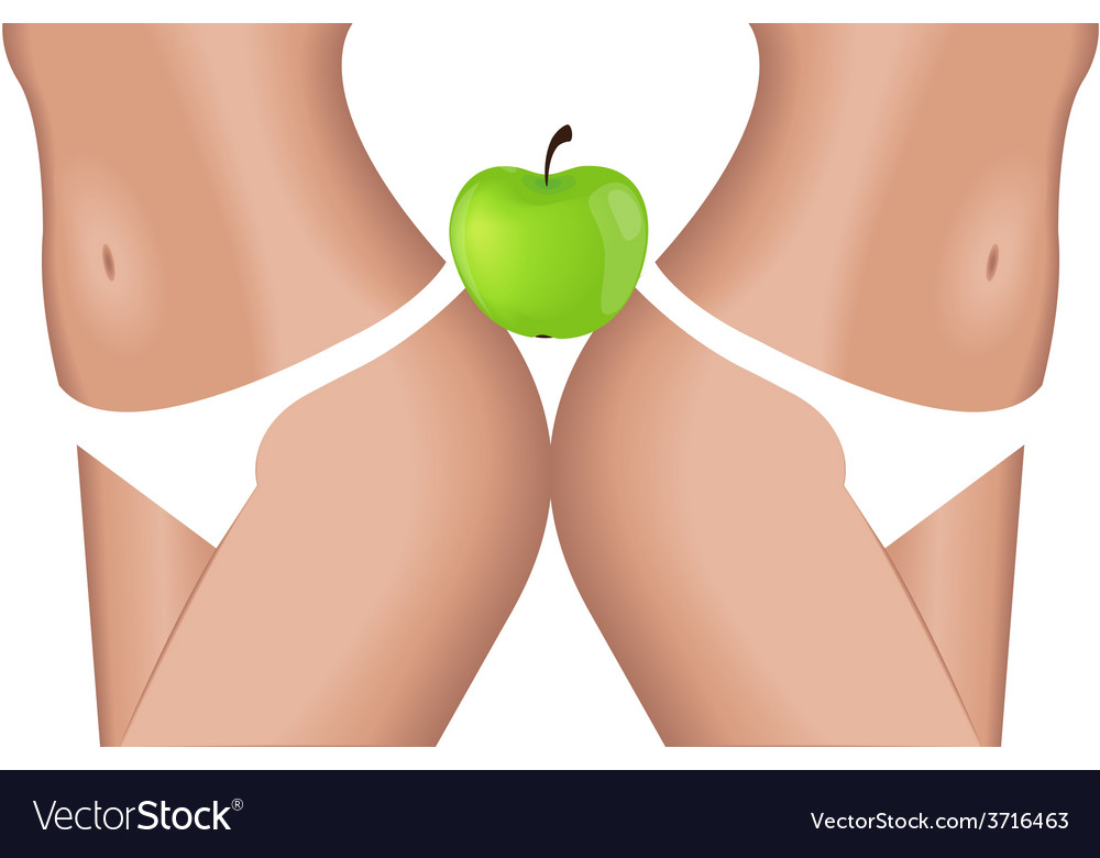 Apple diet vector