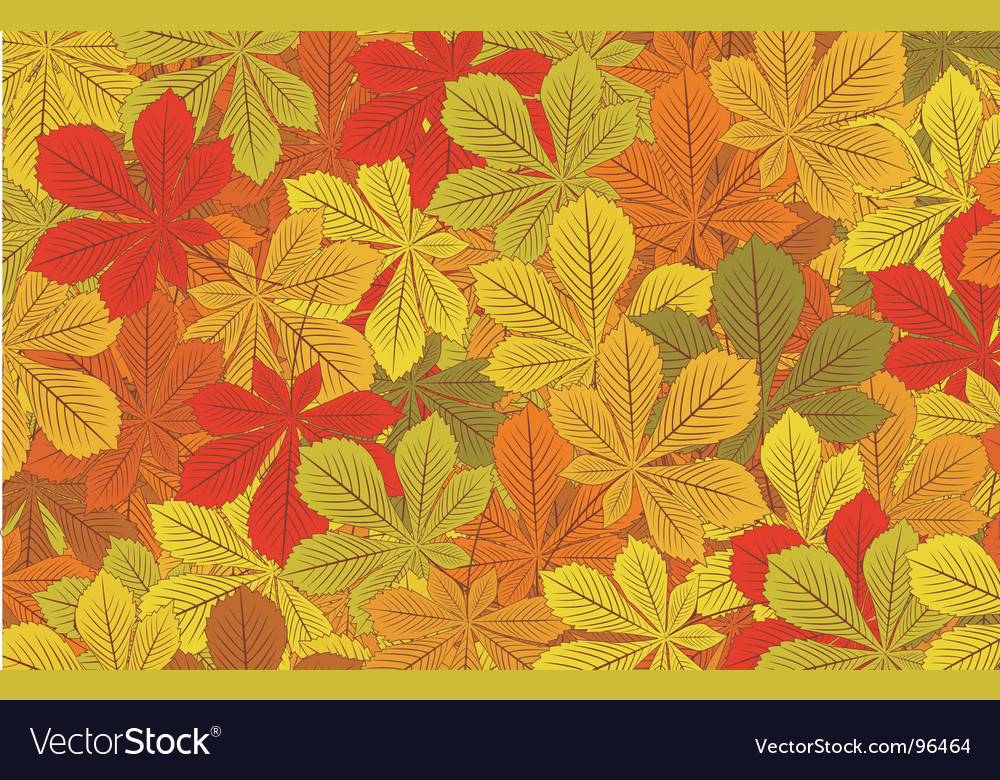 Autumn horse chestnut leaves backgroun vector | Price: 1 Credit (USD $1)